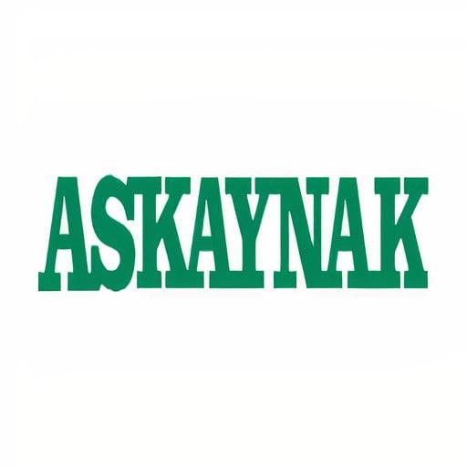 askaynak_auto_x1-min